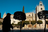 Cathedral. Palencia, Spain.