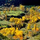 Serveto. Huesca province. Aragon. Spain.