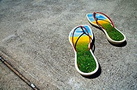 Ecological footprint: sandals depicting flowerfilled natural environment in highly urbanised concrete environment