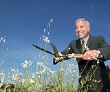 Mature businessman clipping wildflowers with shears, low angle view
