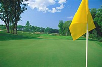 Golf course green with flag and fairway