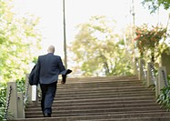 Businessman walking up stairs, rear view