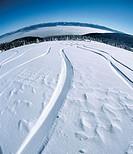 Martinske Hole, Mala Fatra, Little Fatra, Fatra, Slovakia, snowboard tracks