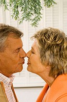 Side profile of a senior couple kissing each other