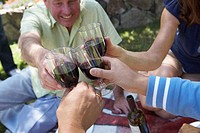Close-up of a mature man and his friends toasting with wineglasses