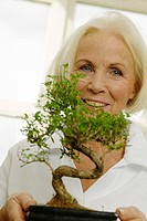 Senior woman holding potted bonsai tree, smiling, portrait, close-up