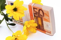 Euro banknote and yellow flower, close-up