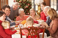 Large family eating Christmas dinner, Richmond, Virginia, United States