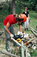 Sawing by Chainsaw. Sweden