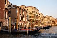Italy, Veneto, Venice, Grand Canal, moored gondolas