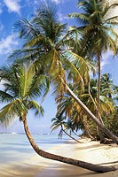 Trinidad and Tobago, Tobago, Pigeon Point, tropical beach