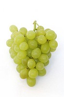 Bunch of white grapes against white background, close-up