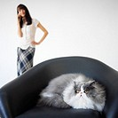 Close up of a cat sitting in a chair in the foreground and young woman standing in the background