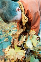 Little boy in the autumnal wood, forest, playing with coloured leaves