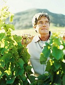 mature man standing in a vineyard