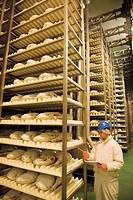Hams in Campofrio factory. Burgos province, Castilla-León, Spain