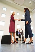 low angle view of two business women shaking hands