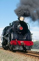 Steam loco 1271 on excursion. New Zealand