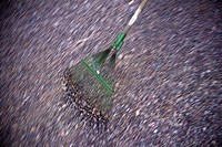 A green broom on gravel
