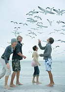 Group of young friends feeding seagulls on beach