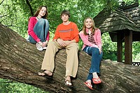 Three teenagers sitting on a branch