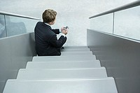 Businessman on steps using personal digital assistant
