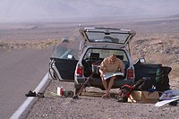 A man sitting on tailgate of car in the desert near Lone Pine, CA.