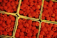 Red raspberries in cartons, full frame
