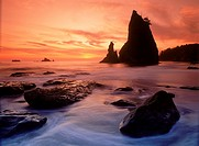 Sea stacks on Olympic Peninsula in Olympic National Park at sunset