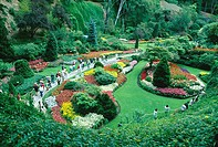 Tourists admiring the beautiful flowers in The Sunken Garden section of Butchart Gardens, Victoria, BC, Canada