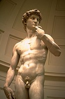 Statue of Michelangelo's David, Florence, Italy.