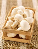 Mini crate of button mushrooms