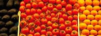 Tomatoes, satsumas and avocados
