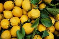 Lemons in Rome market