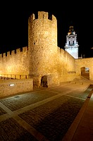 Cathedral tower (gothic, XIVth c.) and city walls. Burgo de Osma. Castilla-León. Spain.