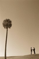 Businessmen Meeting by Palm Tree
