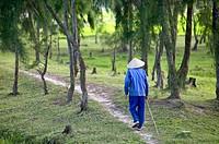 Vietnamese man walking in the woods near Hoi An.
