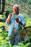 Shopper Examining Plant at Nursery