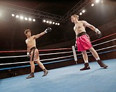 Boxer Taunting Opponent