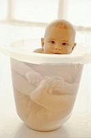 Baby, bath buckets, bathes   Child, boy, toddler, infant, 6 months, Tummy Tub bath buckets baby bath personal hygiene care body hygiene, hygiene, wate...