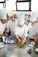 Salmon tartare. Luis Irizar cooking school. Donostia, Gipuzkoa, Basque Country, Spain
