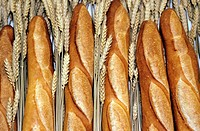 Different varieties of bread - France(french baguette bread)