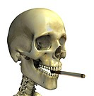 Smoking skeleton  Skeleton smoking a cigarette