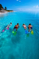 Group of People Snorkeling