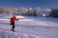 Germany, Upper Bavaria, Werdenfels,  Karwendel, Loipe, long runners,  Fuzziness,  Southern Germany, Bavaria, alpine upland, Karwendel, scenery, landsc...