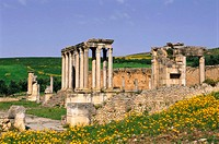 Tunisia, Dougga, ruin city Thugga,  Caelestis temples,   North Africa, archaeology, excavations, remains, ruins, destroyed , culture, Roman, temple ru...
