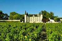 France, Aquitanien, Medoc, Pauillac, Chateau Pichon Longueville, vineyard,    Series, close to Pauillac, buildings, palace, built nature 1850, archite...