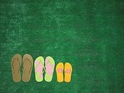 Art lawns, flip-flops, symbol,  Family,   Meadow, grass, artificially, shoes, bath shoes, summer shoes, Flip flops, size, color, differently, symbol, ...