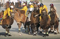 Mongolia. Gobi desert. Dalanzadgad area. Moron village. Camel festival. Mongolian new year. Polo tournament.