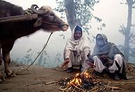 Farmers at dawn, Haridwar. Uttaranchal, India